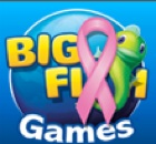 Save on Big Fish Games