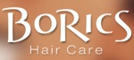 BoRics Logo