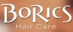 BoRics Logo
