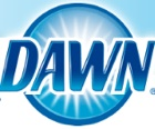 Logo for Dawn Dish Soap